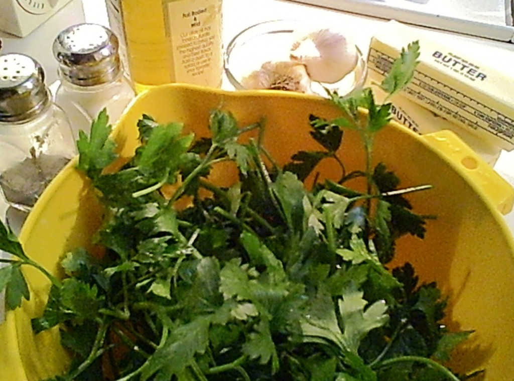 Parsley Sauce Ingredients - Gluten-Free
