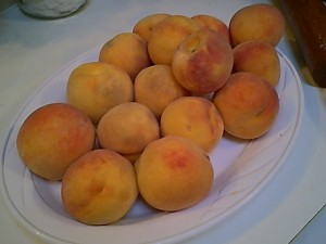 Peaches Ready to Become Pie