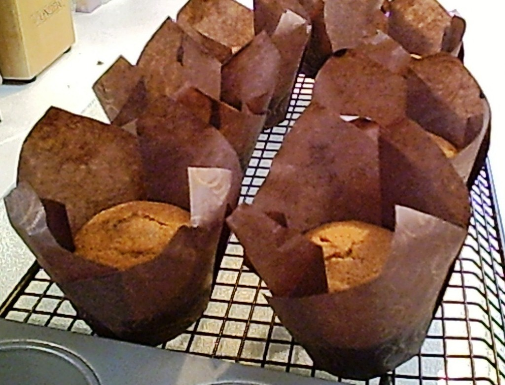 Gluten-Free Pumpkin Muffins with Agave, Hot and Yummy... Right from the oven!
